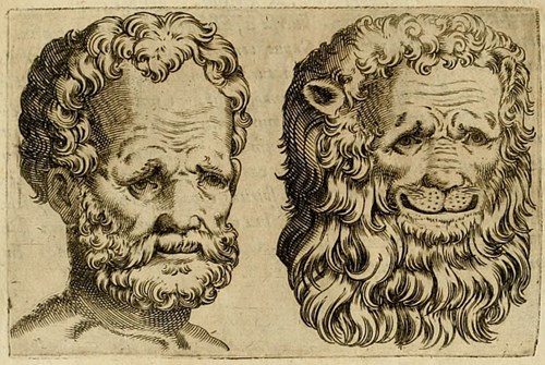 Uit Alexander Todorov, Face Value: An illustration from Giovanni Battista della Porta s De Humana Physiognomia.
