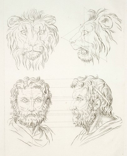 Uit Alexander Todorov, Face Value: After Charles Le Brun, lion and lion-man. Le Brun was developing a system for comparing animal and human faces.