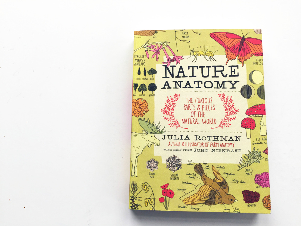 Uit: Julia Rothman, Nature Anatomy: The Curious Parts and Pieces of the Natural World