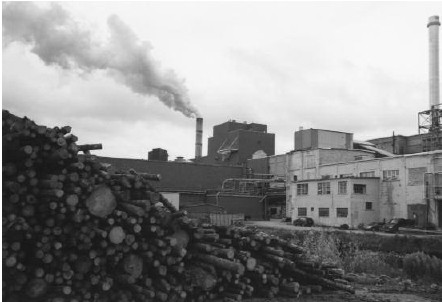 The Cornerbrook Pulp Factory (Foto auteur)