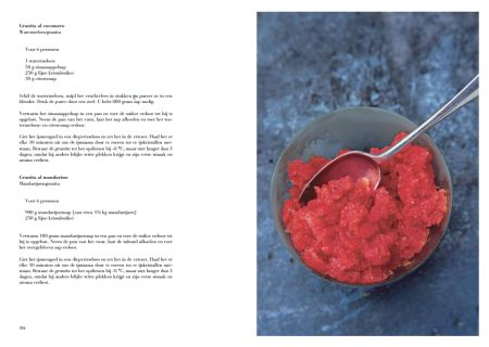 Granita al cocomero